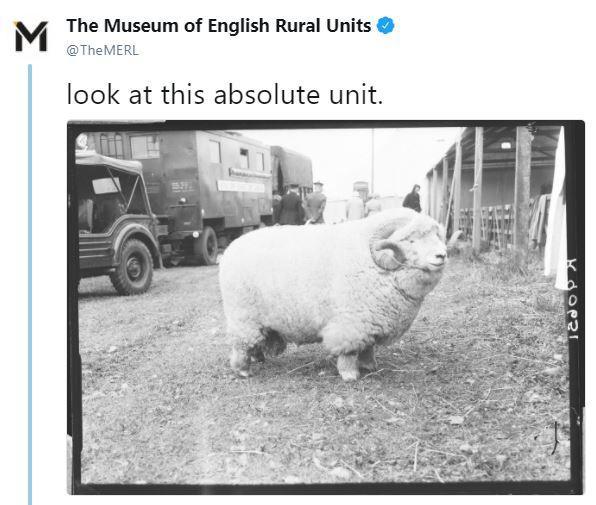 Museums on social media
