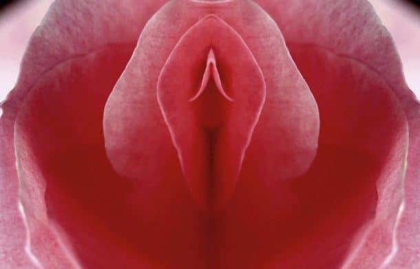 vagina museum camden