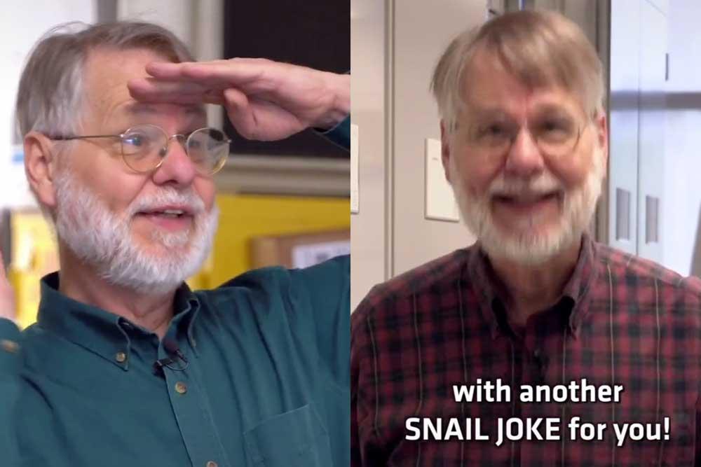 Snail Joke Museum TikTok
