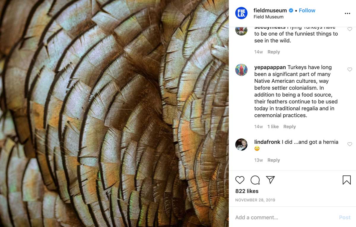 Field Museum Instagram
